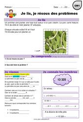 Multiplication, périmètre et euros - CM1 - Je lis et je résous des problèmes