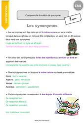 Comprendre la notion de synonyme - CM1 - Leçon
