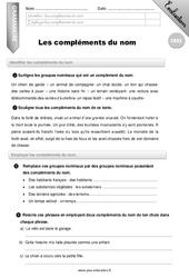 Les compléments du nom - CM2 - Evaluation - Bilan