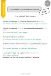 J'orthographie correctement les noms au pluriel - CM1 - Leçon